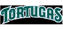 Daytona Tortugas